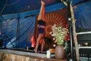 Handstand-Workshop-beim-Spirit-of-Nature-Yogafestival-Juni-2017-008