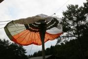 Workshop-Therapeutisches-Fliegen-beim-Spirit-of-Nature-Yogafestival-Juni-2017-017